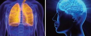 INTRODUCTION TO LUNG HEALTH AND NEUROLOGY: A HEALTH WORKSHOP FOR THE CHINESE COMMUNITY