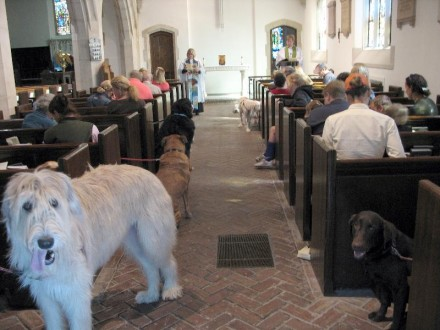 Animals in the church, 10-2-11