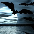 halloween, bats, moon, water, flight, fly, wing, sky, clouds, night, vampire